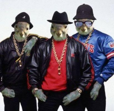 Picture of squirrels dressed as rappers